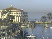 Catalina Island Cams